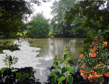 Heeper Teich