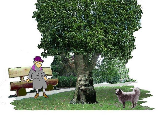 Brillenbaum