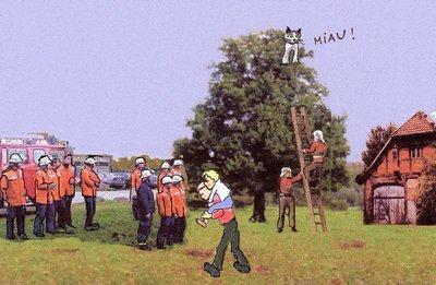 14 Katze
