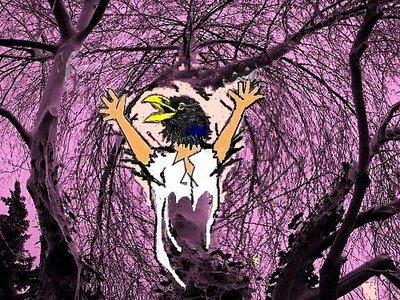 Sara Gespensterbäume