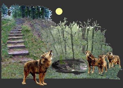 Waldtrepe mit senke mit 4 Wölfen