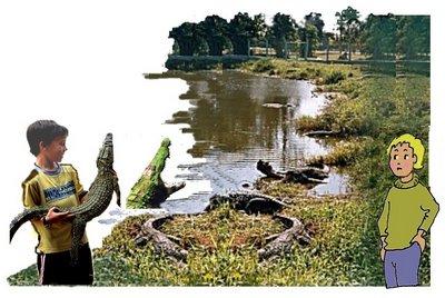 34 Krokodile mit Lumpi