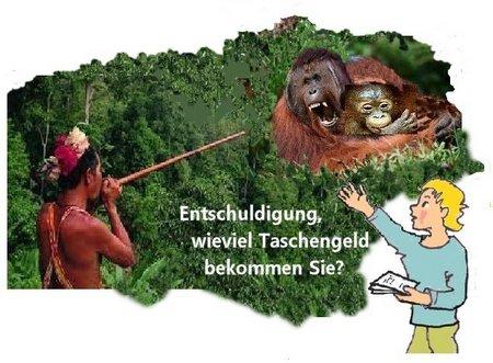 31 Borneo Frage Taschengeld