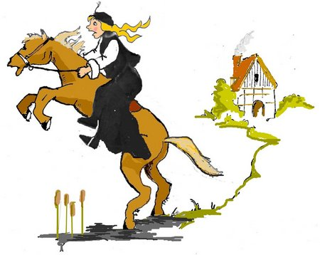 Pan Pferd Haus fertig