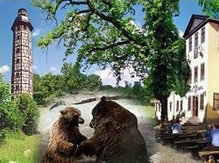 Possen 3 Bär