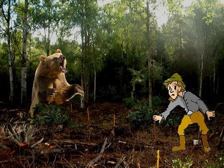 wüster Wald
