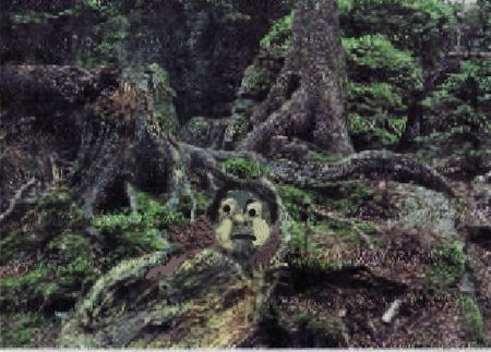 Troll Wald Troll