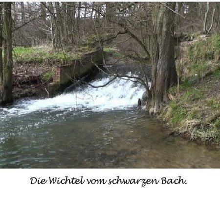 Schwazbach Titel 2
