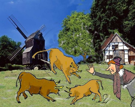 Bauernhaus mit Bullen