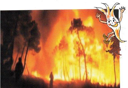 Flämmchen Waldbrand