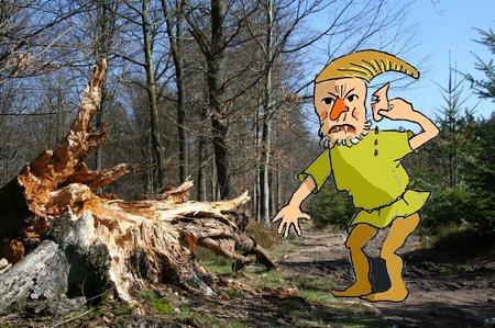 Förster kranker Wald