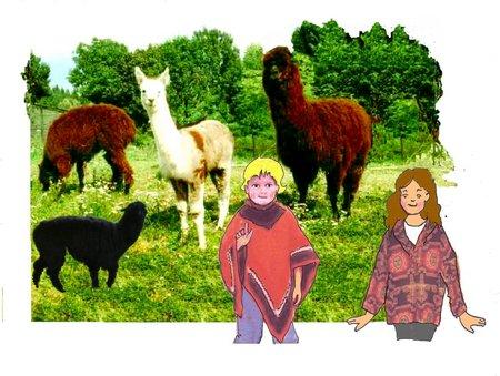 29 Alpaka mit 4