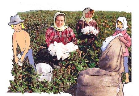 29 Baumwollfrauen 2
